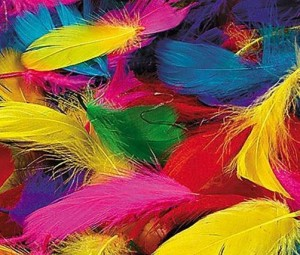 600 colorful craft feathers only shipped plus ways