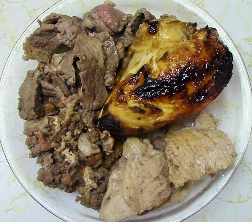 zero carb animal kingdom meat only diet darlene michaud